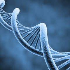 Epigenetics: Scary Word or Key to Your Health?