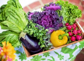 What is Personalized Nutrition?
