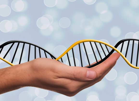 Your Genes Aren't Your Destiny – All About Epigenetics and You