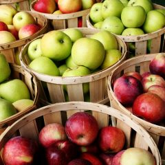 Detox Foods: Are Apples All That..?